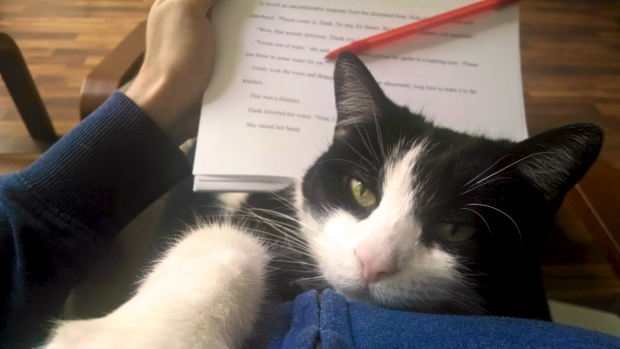 Editing Cat