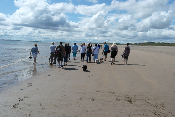 group walking on beach