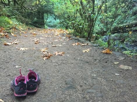 trail running forest park