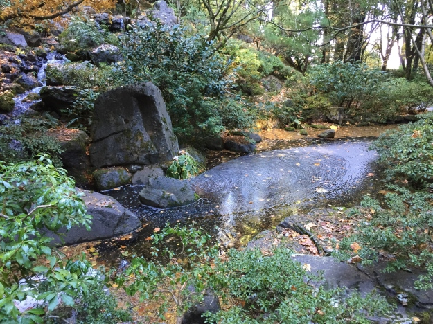 portland japanese garden pond