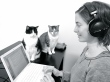 writing with cats