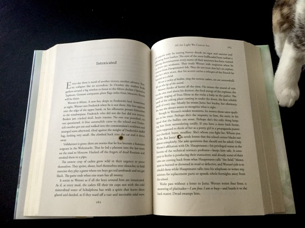 cigarette burn in book