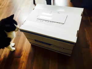 box of belongings