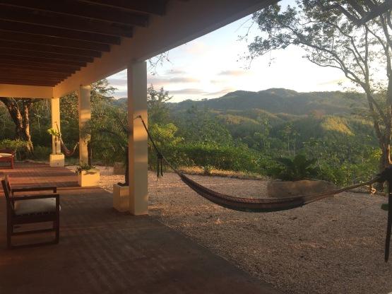 jungle-hammocks