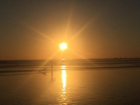 sunset-surfers