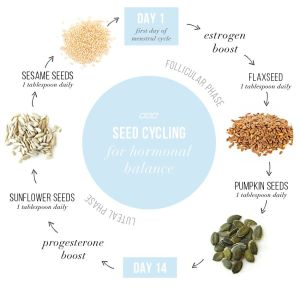seed cycling hormonal balance